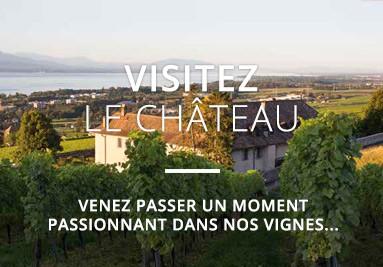 Visitez le Château de Mont